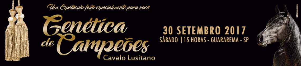 Banner do Leilão
